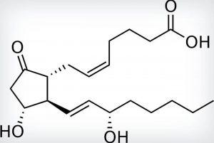 prostaglandina